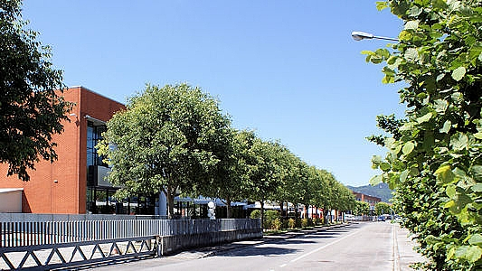 CIP Consorzio insediamenti produttivi, il viale principale